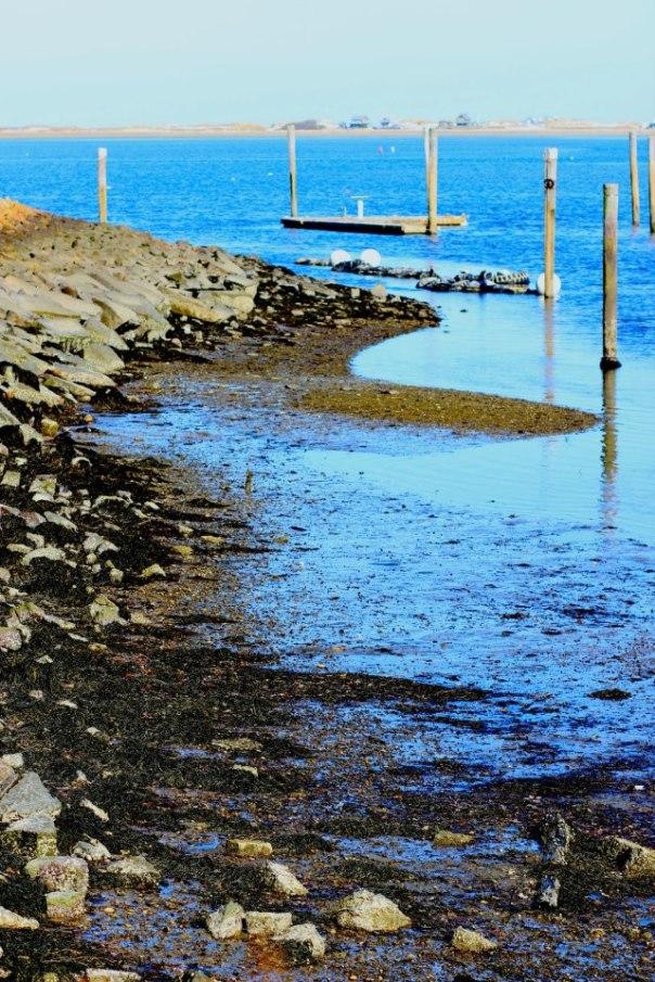 On Plymouth Harbor.  Photo by Evan Schneider.