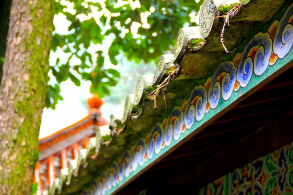 The temple rooftops in Kunming, Yunnan.