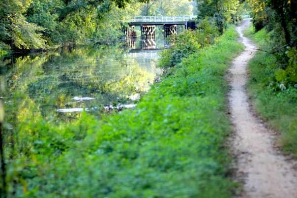 The D & R Canal in Princeton at the height of summer.  Photo by Evan Schneider.