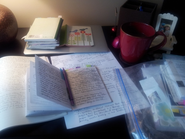 This is what writing a dissertation looks like...fieldnotes and all!  My photo.