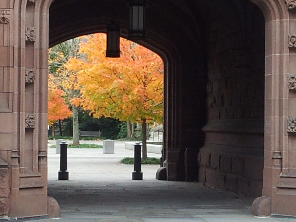 Glimpsing fall through Princeton University's arches.