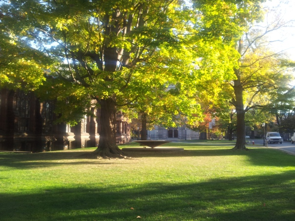 Lovely light across campus.
