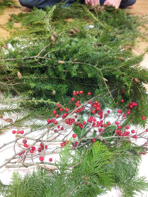 Pine boughs and berries.  All photos mine.