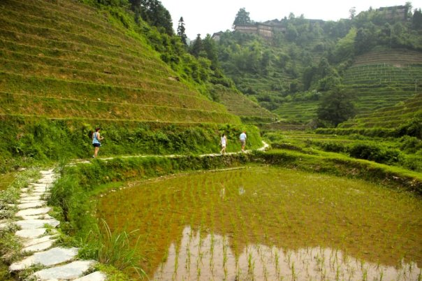 My family hiking in the rice terraces outside Guilin, Guangxi.  Photo by Evan Schneider.