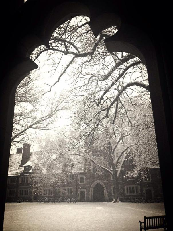 The snowy Princeton campus.  Photo by Serena Stein.