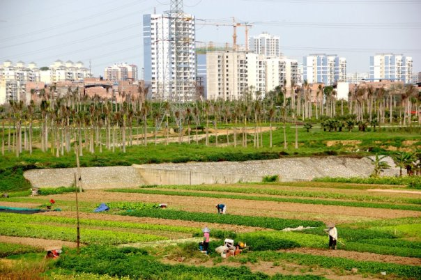 Nanning's ultra modern and traditional landscapes side by side.  Photo by Evan Schneider.