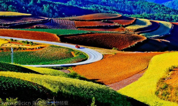 Fall in Guangdong province, China.