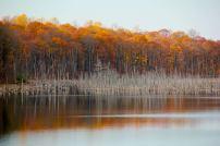 Merrill Creek Reservoir. Photo by Evan Schneider.