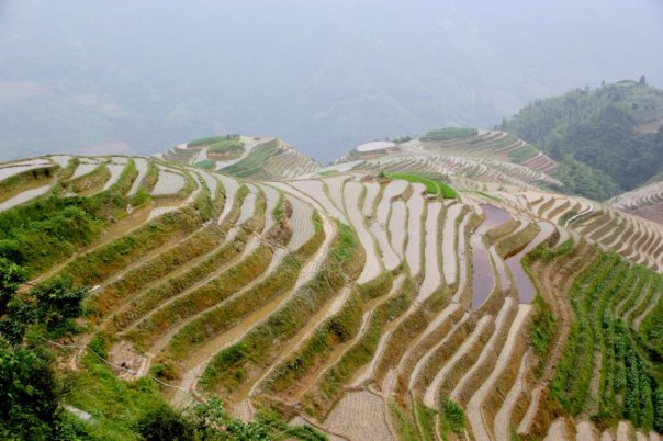 God's beauty.  Rice terraces in Guangxi, China.  Photo by Evan Schneider.