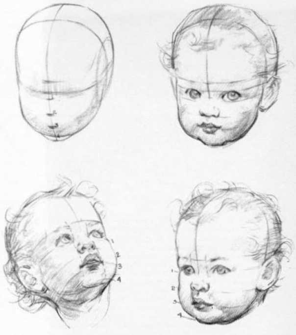 construction-of-baby-heads